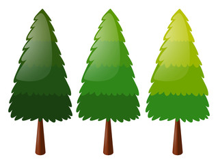 Tree in three colors
