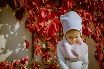 little girl on a background of red autumn leaves