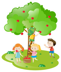 Kids picking apples from apple tree