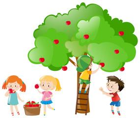 Children picking apples from tree