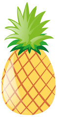 Single pineapple on white background