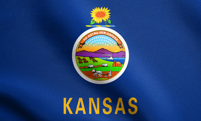 Flag of Kansas waving with fabric texture