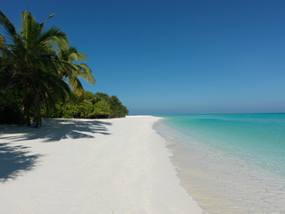 The white sandy beach under the shade of the jungle  -  Everyone should visit the Maldives, because each person must see paradise.