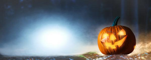 halloween pumpkin in the dark forest