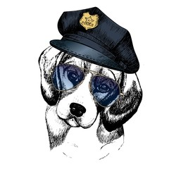 Vector close up portrait of police dog. Beagle wearing the peak cap and sunglasses.