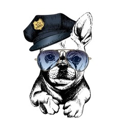 Vector close up portrait of police dog.French bulldog wearing the peak cap and sunglasses.