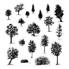 Sketch of black silhouettes trees