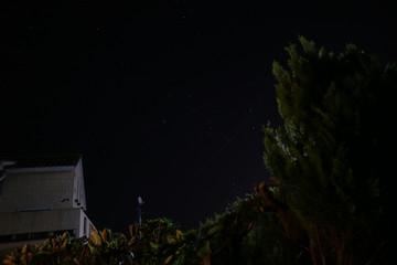 庭から眺めた電線越しの夜空