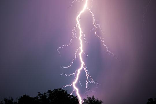 Night lightning over forest