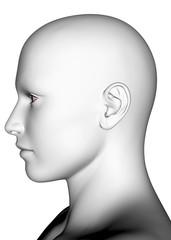 White Human Face - 3D