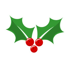 Holly berry Christmas plant symbol.