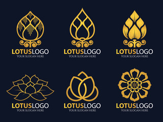 Gold Lotus logo vector illustration art set design