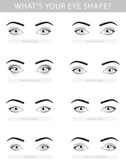 Various types of woman eyes, vector set