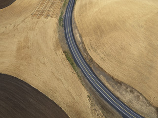 USA, Washington State, Palouse hills, road between wheat fields