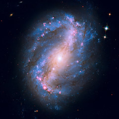 NGC 6217 is a spiral galaxy in the constellation Ursa Minor.
