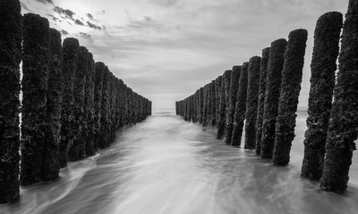 Wall Mural - breakwater in black and white colors