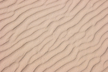 Wall Mural - sand texture background