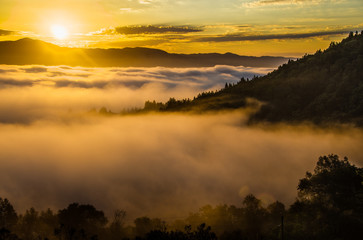 Golden sunrise shining through fog with tree covered hills in mid ground