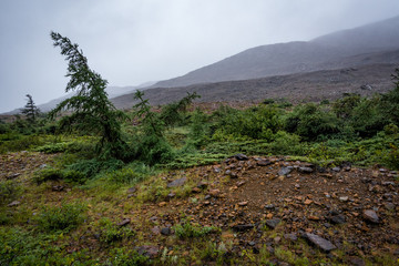 Eerie  wide angle view of the Tablelands