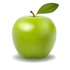 illustration of detailed big shiny green apple