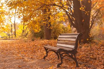 rural wooden bench. vintage autumn background