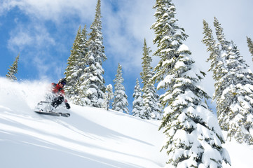 A woman skiiing in blue skies and powder at Whitewater Winter Resort, Nelson, British Columbia