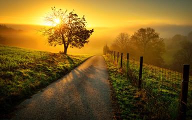 Keuken foto achterwand Oranje Idyllische Landschaft bei Sonnenaufgang, mit Weg und Baum auf der Wiese