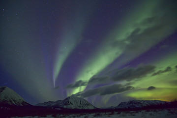 Aurora borealis or northern lights above the mountains outside of Whitehorse, Yukon Territory, Canada.
