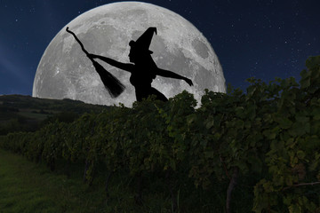 Halloween witch silhouette flying with broomstick. Full Moon Vin