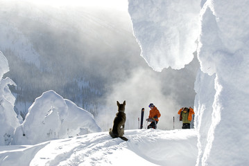 Two skiers and a dog getting ready for a fine backcountry run down the Whaleback, Nelson, British Columbia