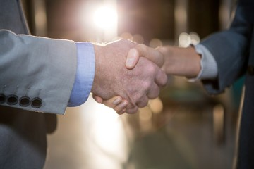 Businessman shaking hands with colleague