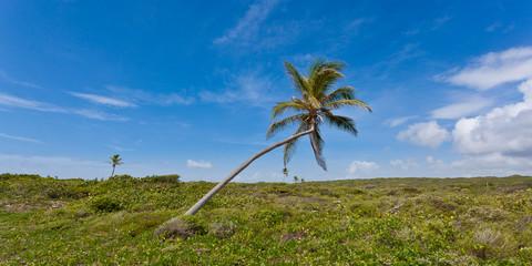 Anguilla Beaches and More