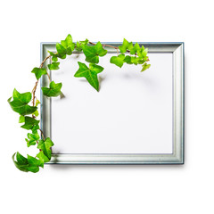 Wooden frame with ivy leaves