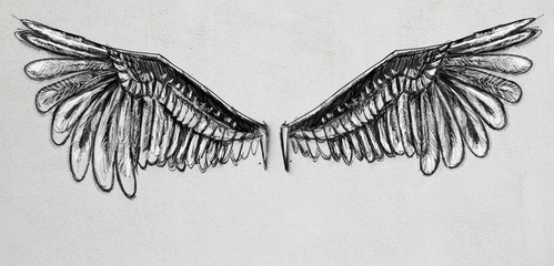 Wings sketch