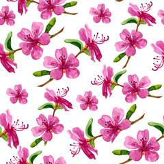 Flower of Labrador tea in seamless pattern