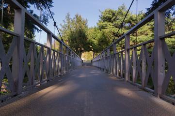 Long wood bridge in forest.
