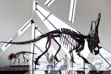Mother with little girl and boy looking at dinosaur fossils at Royal Ontario Museum, Toronto, Ontario, Canada