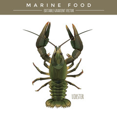 Lobster. Marine Food