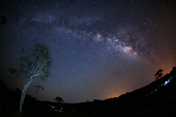 Milky Way Galaxy and Silhouette of Tree with cloud.Long exposure