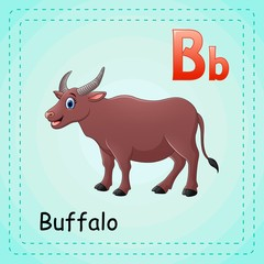 Animals alphabet: B is for Buffalo