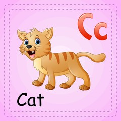 Animals alphabet: C is for Cat
