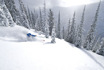 A skier descends a slope in the Selkirk Mountains, Valhalla Powdercats, British Columbia