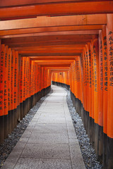 Dedicated to Inari, the god of rice and sake, Fushimi Inari Shrine is famous for its thousands of vemilion torii gates that straddle a network of trails up Inari mountain behind its main buildings. Kyoto, Japan