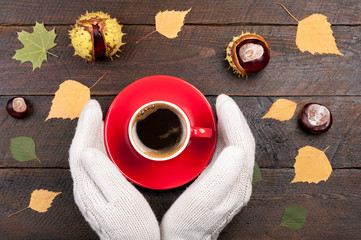 Woman hands in mittens holding cup of coffee on autumn wooden background. Autumnal coffee break. Concept cozy coffee cup. Top view