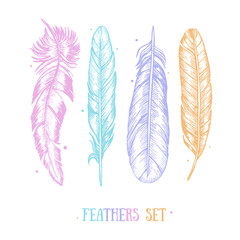 Feathers Set Hand Draw Sketch Card . Vector