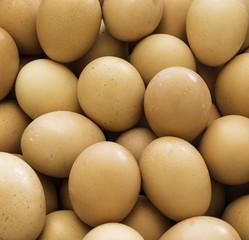 Fresh country eggs