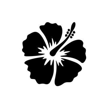 Hibiscus flower black color illustration.