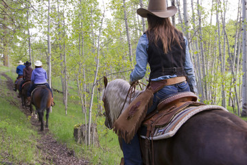 A group of riders make their way through a stand of Poplar trees at AP Guest Ranch, South of Merritt, Nicola Valley, Thompson Okanagan region, British Columbia, Canada