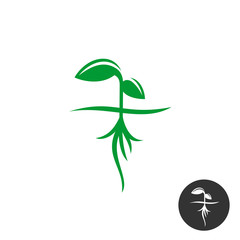Plant sprout with roots and green leaves silhouette