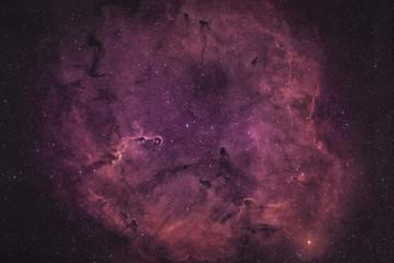 Elefantenrüsselnebel / Elephant's Trunk nebula